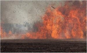 Fotografía: Al Jazeera. Quema de caña de azúcar en el Bajo Lempa.