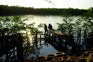 A small town nestled into the mangrove forests, but threatened by tourism projects targeted for the region