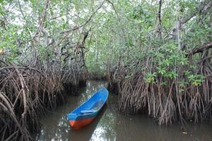 La Canoa