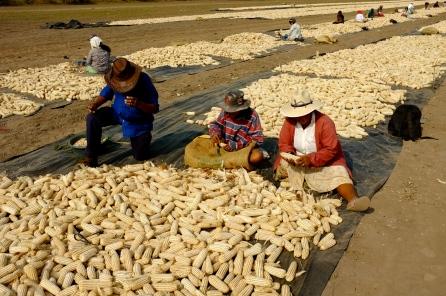Image result for PHOTOS OF VICTIMS OF CAFTAS IN EL SALVADOR