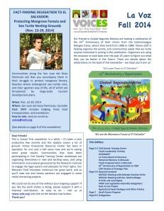 Vocies Newsletter Sept. 2014 (Eng)