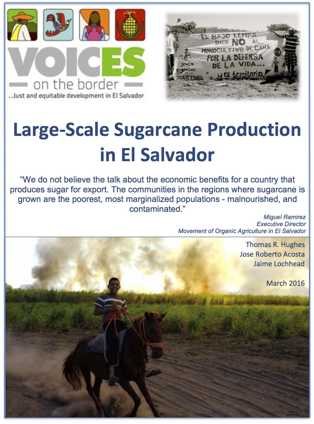 Sugarcane Report Image Eng