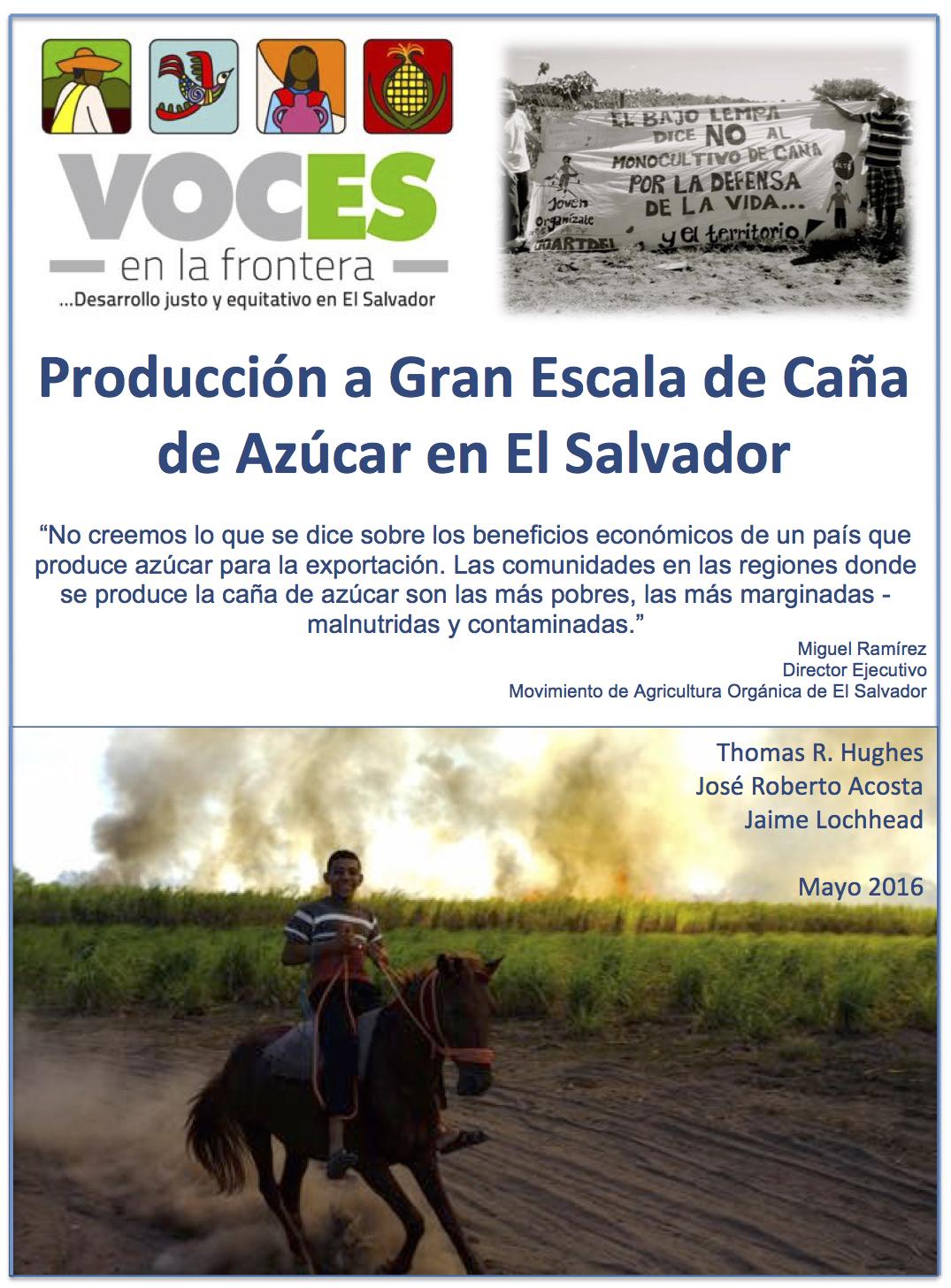 Sugarcane Report image spa