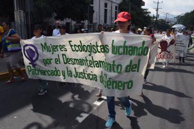 Mujeres Ecologistas Pro Justicia
